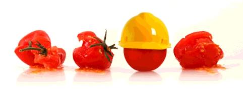 smart tomato
